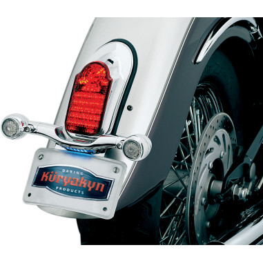 Taillight w/ License Plate Assembly