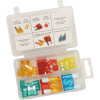 33-PIECE MASTER FUSE ASSORTMENT AND 30-PIECE MINI FUSE ASSORTMENT