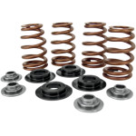 Beehive valve spring kits