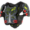 A-10 chest protector (BNS)