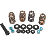 PERFORMANCE VALVE SPRING KITS