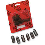 CSK SERIES HEAVY-DUTY CLUTCH SPRING KITS