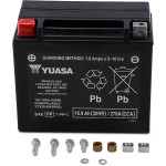 FACTORY-ACTIVATED AGM MAINTENANCE-FREE BATTERIES