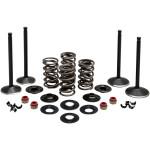 BLACK DIAMOND™ COMPLETE ENGINE VALVE KITS