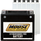 Maintenance-Free Batteries