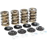 Dual valve spring kit