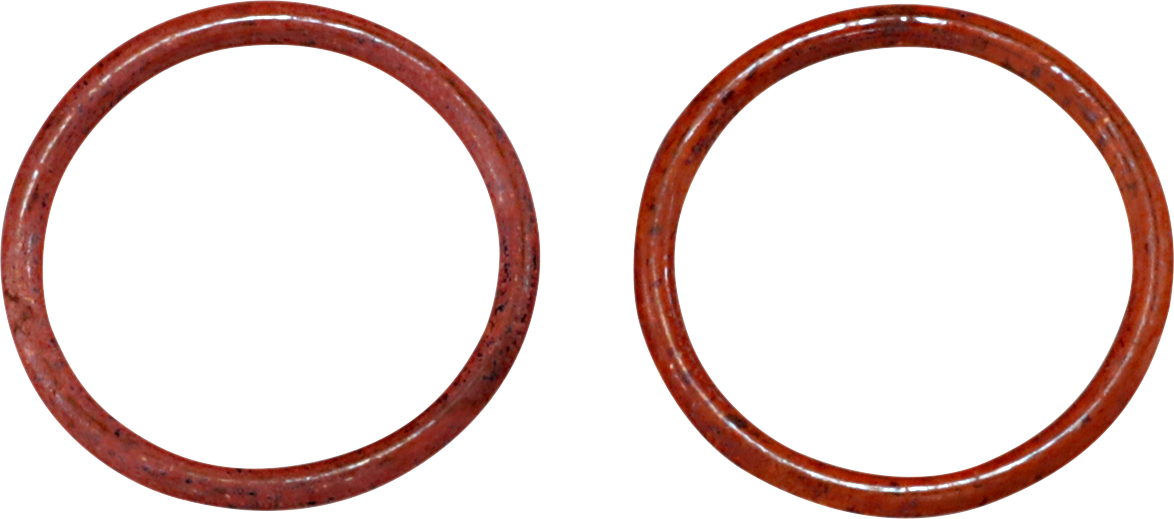 James Gasket Pair Exhaust Gaskets 99-20 Harley Dyna Touring Softail Sportster