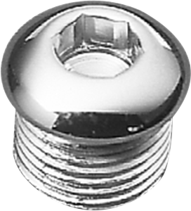 "Drag Specialties Chrome 5/8"" -18 Timing Plug Oil Tank Drain Plug for Harley"