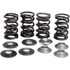 LIGHTWEIGHT RACING VALVE SPRING KITS