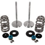 HIGH-PERFORMANCE V-TWIN VALVE KIT